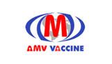 AMV Vaccin