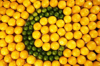 vitamin-c-co-the-tieu-diet-te-bao-goc-ung-thu